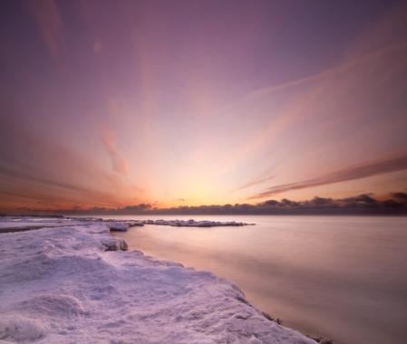 pink beach at dawn